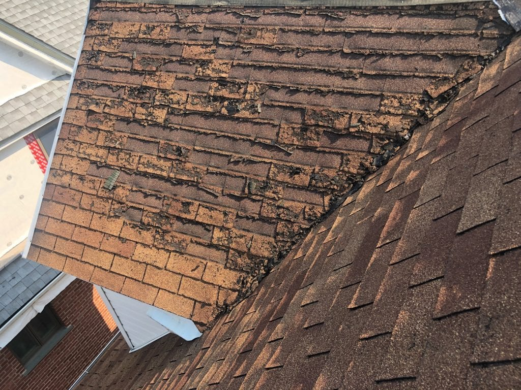 roofing contractor in Brookyln NY best roofing company in Brookyln yelp roofer best yelp roofing contractor roofer near me roofers in Brookyln best roofing contractor top 10 best roofers roof repair